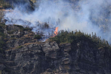 Wild fire at Piegan Pass, Going to the Sun Road, Glacier National Park 免版税图像