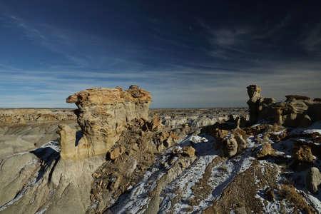 De-na-zin wilderness area-petrified wood Hoodoo , Bisti badlands, New Mexico