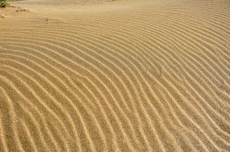 viento soplando: El viento que sopla patrones de arena en la costa norte de Taiw�n 25 de marzo 2012
