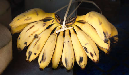 Bunch of bananas Stock Photo - 6767582