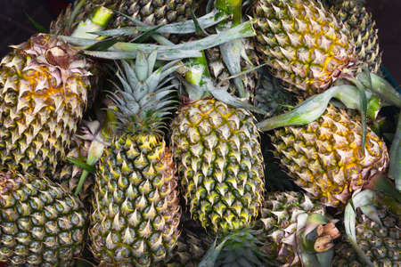 Bunch of fresh pineapples at a market stall Stock Photo - 8570455