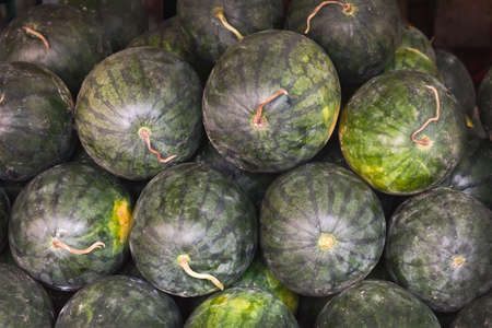 Bunch of fresh watermelons on a street market Stock Photo - 8595772