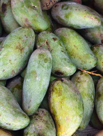 Green mangos on a local market in Thailand Stock Photo - 8674810