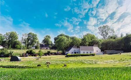Farm house in Denmark, with horses and machines photo