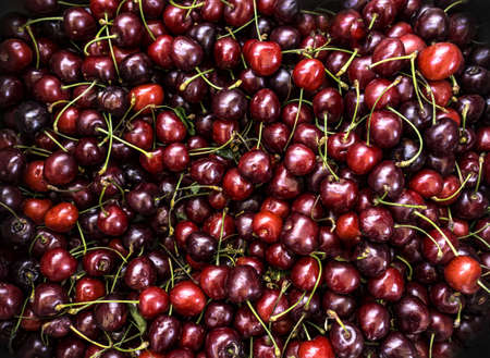 Fresh cherries ripe and ready to eat Stock Photo - 20436251