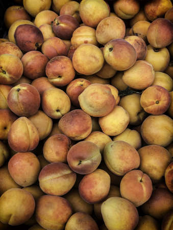 Fresh peaches, bunch of in a group Stock Photo - 20918793