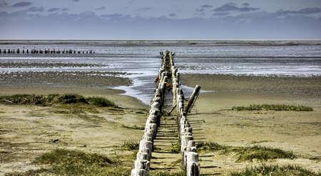 Wadden sea from the island Mando, Denmark Standard-Bild