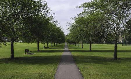 cambridgeshire: Pathway through traditional british park, Cambridge, UK
