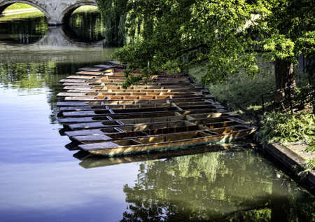 punt: Punts lined up on river in  Cambridge England