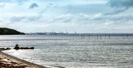 Aarhus container harbor with cormorants in foreground, Denmark Stock Photo