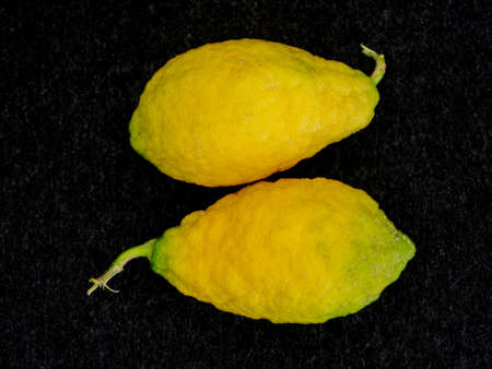 Piretti cedrat citrus lemons