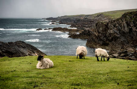 Achill head in county Mayo on the west coast of Ireland