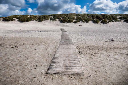 Dunes with pathway at the Danish North Sea coast in Henne