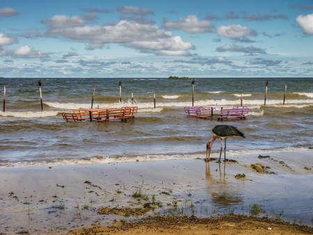 Lake Victoria deserted beach near Entebbe, Uganda
