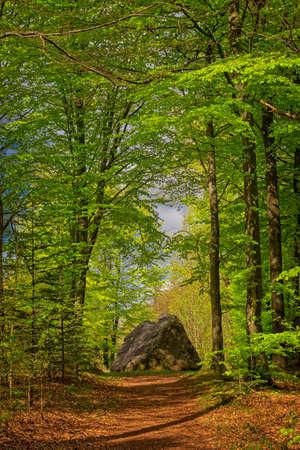 Tirslund glacial megalith stone in western Denmark