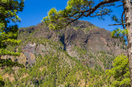 View over La Palma, Caldera de Taburiente, submit from near the viewpoint Cumbrecita