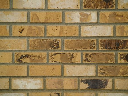 Brick wall backgrounds, all in good repair,  in various shades of brown, tan, and white.