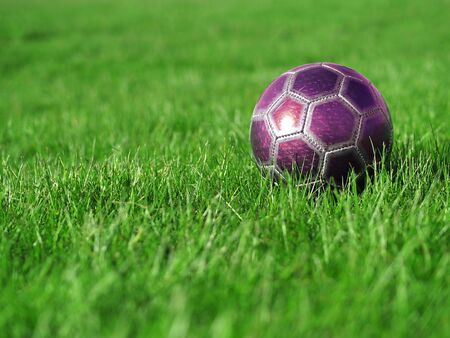 A pink soccer ball on a field of bright, green grass on a sunny day Stock Photo - 5023050