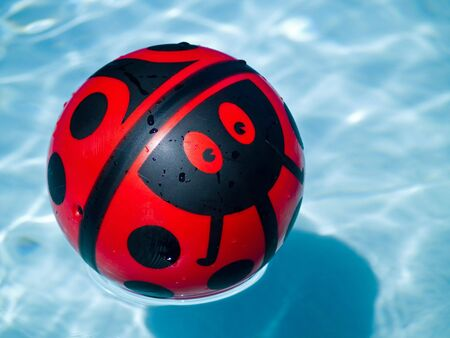 Lady bug ball in a blue swimming pool