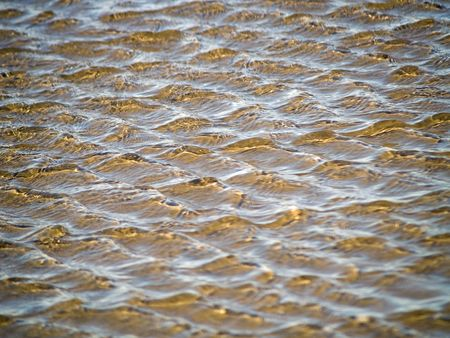 Ocean Ripples in Shallow Water on a Beach Stock Photo - 6580560