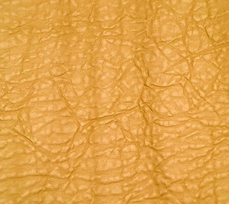 Leather Background Texture Warm Yellow Orange Color Stock Photo - 6881130
