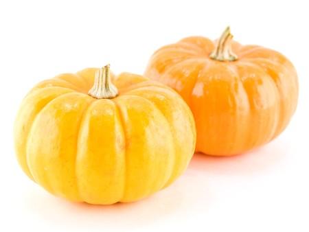 Mini Pumpkins. Caption = Losse op een witte achtergrond  Stockfoto