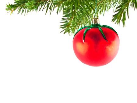 Arbre de No�l vacances ornement pendu � une branche Evergreen isol�e