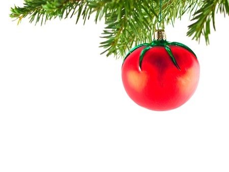 Christmas Tree Holiday Ornament Hanging from a Evergreen Branch Isolated photo