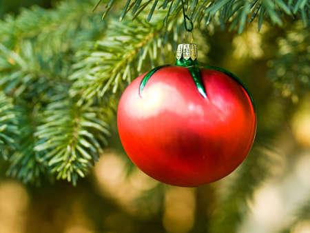 tomate de arbol: Gruta de tomate de �rbol de Navidad de suspensi�n de un fuera de la Subdivisi�n de Evergreen