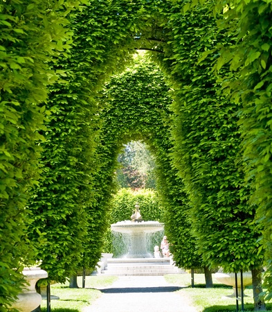 Outdoor Park Archways over a Paved Path on a Sunny Day photo