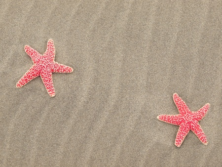 Two Red Starfish on the Beach with Windswept Sand Ripples Stock Photo - 12675353