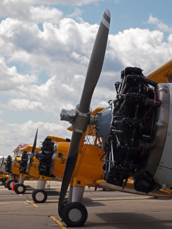 Vintage Propeller Airplanes Lined Up at Airshow photo