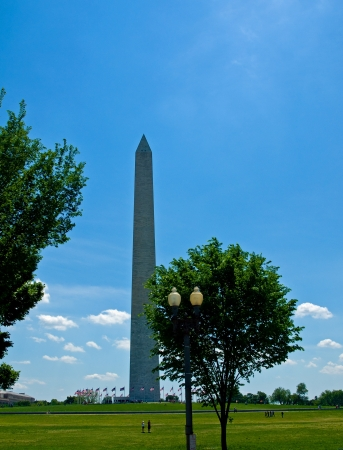 The Washington Monument at Springtime in Washington DC photo