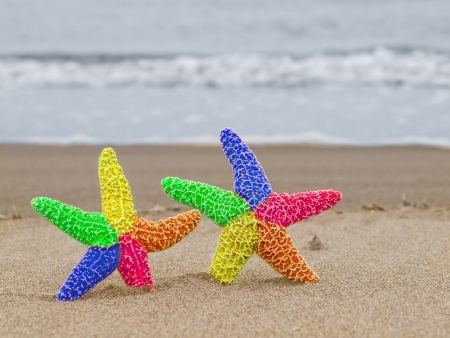 warm water fish: Two Rainbow Starfish on the Shoreline with Waves in the Background Stock Photo
