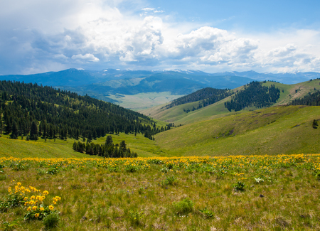 Mountain and Valley View from the National Bison Refuge in Montana USA Stock Photo