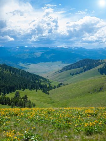 Mountain and Valley View from the National Bison Refuge in Montana USA photo