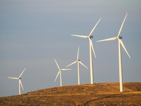 A Windmill Farm on a Mountain at Dusk photo