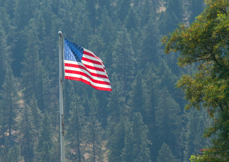 forested: American Flag Waving Proudly on a Clear Windy Day with a Forested Hill Backdrop