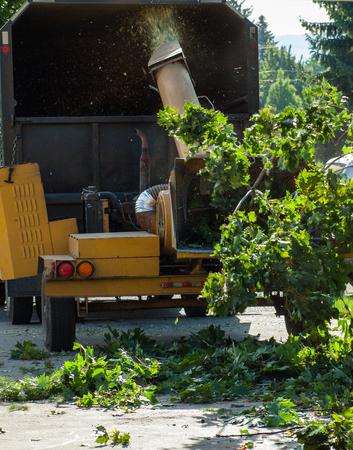 Wood Chipper Shredding a Tree into a Truck photo