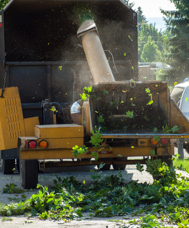 Wood Chipper Trituraci�n un �rbol en un cami�n photo