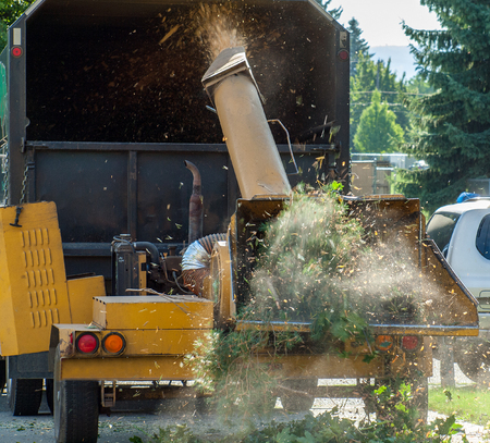 trimmers: Wood Chipper Shredding a Tree into a Truck Stock Photo