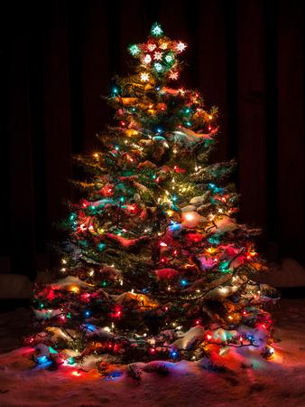 A neve cobriu a árvore de Natal com multi luzes coloridas