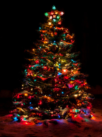 Snow Covered Christmas Tree with Multi Colored Lights