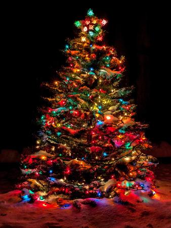 Sneeuw bedekte kerstboom met veelkleurige lichten