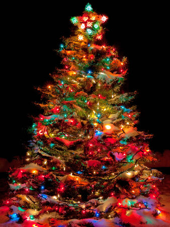 snow covered christmas tree with multi colored lights at night photo - Christmas Tree Night Light