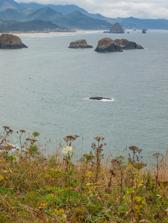 Haystack Rock Viewed from the Ecola State Park Overlook photo