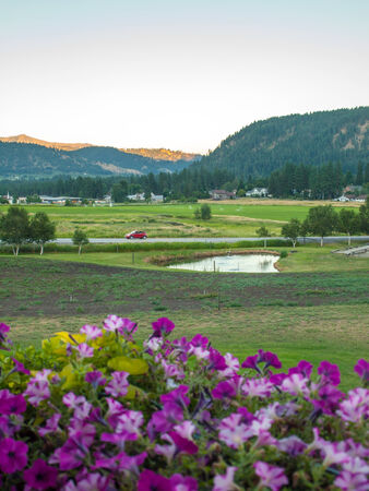 A Mountain Country View with Flowers in the Foreground photo