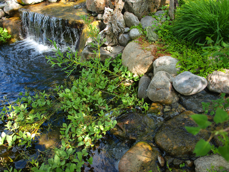 Beautiful Pond and with a Small, Rocky Waterfall Stock Photo