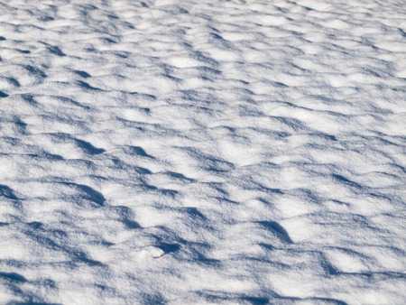 Winter Background of a Snowy Field