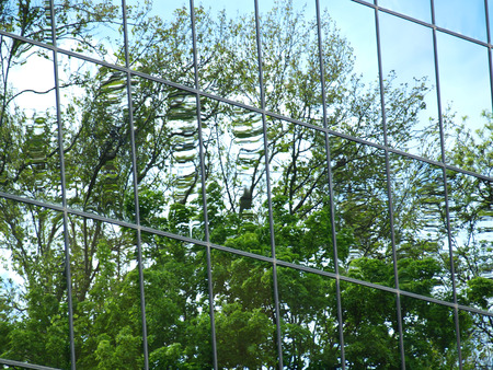 reflection: Trees reflected in windows of modern office building
